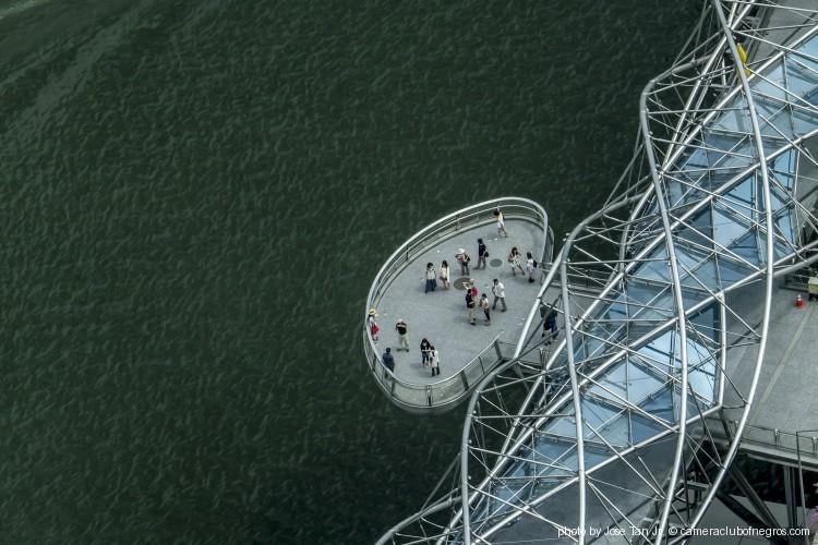 Bird's Eye View of Helix Bridge